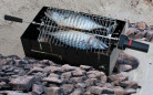 OM2231-Campfire-Fish-with-rocks-02321